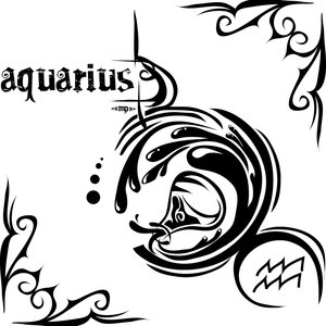 Vedic Astrology Signs: Aquarius