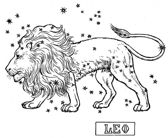Vedic Astrology Signs: Leo